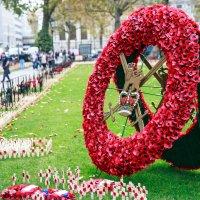 День памяти погибшим -Вестминстер :: Antonina Burton