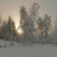 Туда, где на снеходе только 5 :: Сергей Жуков