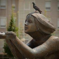 Надо же, птица, а не боится! © :: Юрий Филоненко