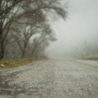 капли снега :: Евгений Khripp