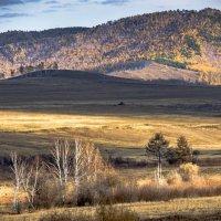 Осень в Бурятии :: Андрей Паршаков