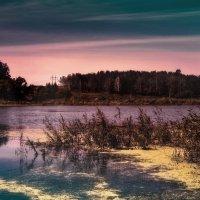 Гаснут тени прохладной ночи... :: Ирина Falcone