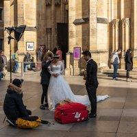 Белое платье, красный чемодан... :: Виктор Льготин