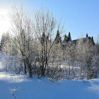 Зимний пейзаж в ноябре :: Милешкин Владимир Алексеевич