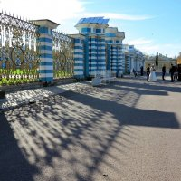 Свадьба возле Екатерининского дворца :: Наталья