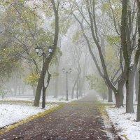 После первого снега :: Сергей Тарабара