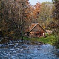 Водяная мельница :: Евгения Кирильченко