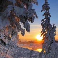 вечернее солнышко :: Александр