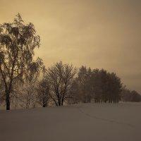 Туда, где на снегоходе только 9 :: Сергей Жуков