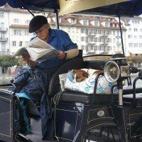Перерыв на отдых: кто-то читает, а кто-то спит... :: Елена Павлова (Смолова)