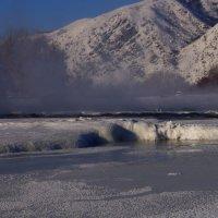 Река Чарыш :: Кристина Воробьева