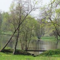 Весна!Весна! :: Алексей Цветков