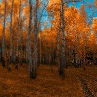 Осенний сон :: Евгения