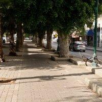 Улицы Тель-Авива - Иерусалимский бульвар :: Владимир Брагилевский