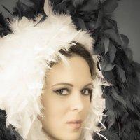 Черный лебедь :: Julia