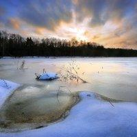 Холод ноябрьского заката... :: Андрей Войцехов