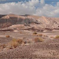 Пейзажи пустыни :: Lmark