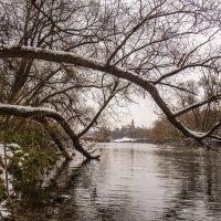 На заснеженных берегах. :: Александр Орлов