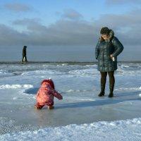Северодвинск. У Белого моря (1) :: Владимир Шибинский