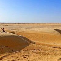 Селфи на барханах Сахары :: Евгений Васин