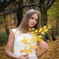 Осеннее настоение :: Виталий Латышонок