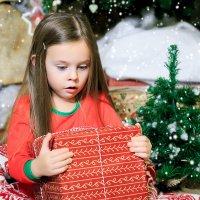 Новогоднее чудо :: Надежда Торопова