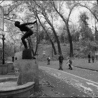 Поздняя осень :: Василий Чекорин
