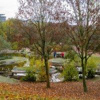 В южном парке гю Дюссельдорф, ноябрь :: Witalij Loewin