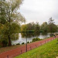В южном парке города Дюссельдорф, ноябрь :: Witalij Loewin