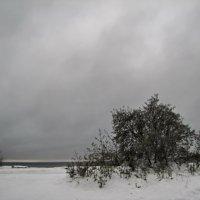 Серые будни Финского побережья :: veera (veerra)