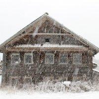 Заметает зима, заметает. :: Андрей Скорняков