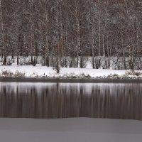 Ноябрьские отражения :: Татьяна Ломтева