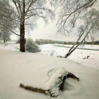 Пришла зима со стужами, сугробами :: Сергей Жуков