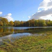 Озеро Лесное в октябре :: Маргарита Батырева