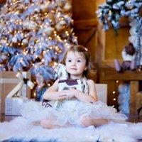 Новогоднее чудо :: Anna Brodska