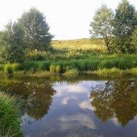 Лето в деревне. :: Игорь Карпенко