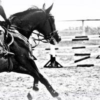 Ирина Рыкова - Конный спорт