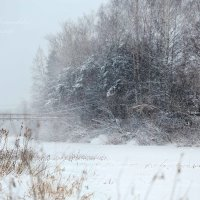 В городе Б. зима :: Юлия Игнатьевская