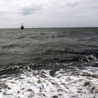 Море :: Svetlana Lyaxovich