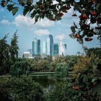 Городские инновации :: Нина
