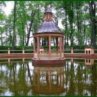 Летний сад :: Наталья