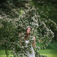 Весна :: Ludmila Zinovina