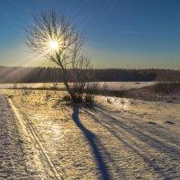 Студеное утро... :: Александр Ковальчук