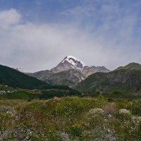Гора Казбеги :: Антонина Петлевская