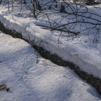 Снежок :: Яков Реймер
