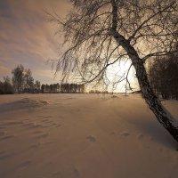 Поутру зимой проснувшись 8 :: Сергей Жуков