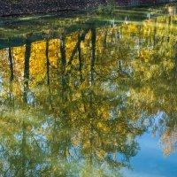 Осень любуется своим отражением :: Владимир Безбородов