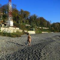 Дикий пляж :: valeriy khlopunov