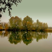 осень, пруд :: Александр Прокудин