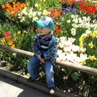 голубой цветочек :: kuta75 оля оля